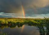 the evening rainbow. poster