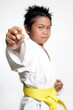 stock photo of karate boys fist