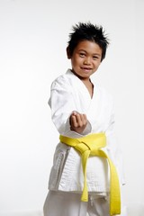 stock photo of kid in karate stance