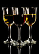 red and white wine in three glasses