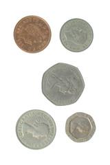 5 english coins