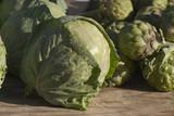 head of lettuce poster