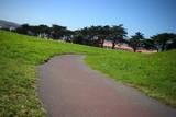 grass path #1 poster