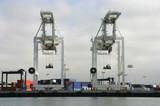 shipping cranes poster