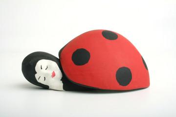 ladybir