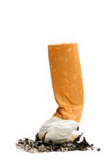 cigarette butte