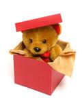 teddy bear inside a box poster