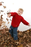 adorable two year old playing in leaves poster