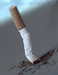 cigarette écrasée 2