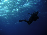 man under water8 poster