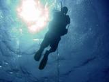 man under water 7 poster
