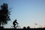 mountain biker silhouette poster