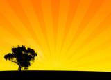 orange bush silhouette poster
