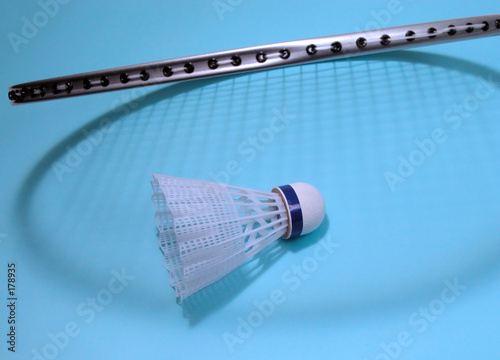 poster of badminton
