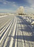 winter - 182173