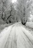 winter - 182947