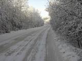 winter - 182952