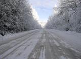 winter - 182953