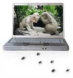 laptop with puppy and pawprints poster