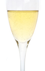 single glass of champagne, macro image, isolated