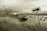 flood, svensen island poster