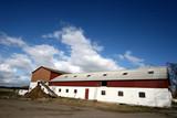 farm in denmark poster