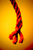 abstract rope poster