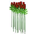 long stem roses poster