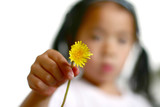 dandelion child poster