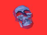 silver skull poster