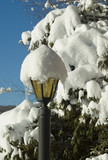 lampost under the snow poster