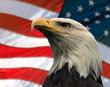 roleta: american eagle