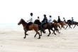 Leinwanddruck Bild - danish horses on the beach