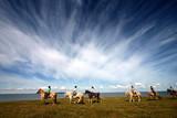 danish horses on the beach poster
