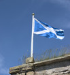 scottish flag 1