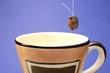 british coffee 2