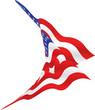 us flag waving briskly