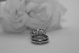 ring, jewelry with white rose poster