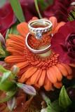 orange gerbera daisy and platinum rings poster