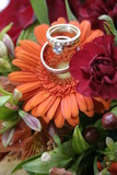 orange gerbera with platinum wedding band, ring poster