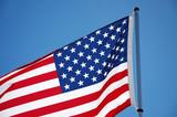 flag - usa poster