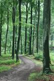 rudeskov path poster