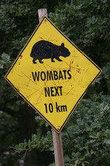 achtung wombats