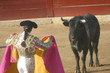woman bull fighter