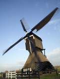 dutch windmill 15 poster