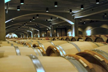 barrels in wine cellar
