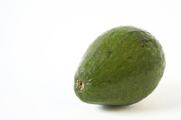 florida avocado