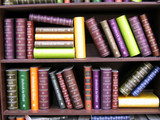 antique books on bookshelf poster