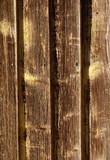 planks poster