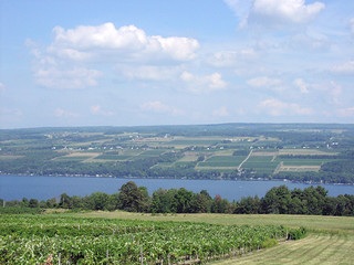finger lakes wine region, ny